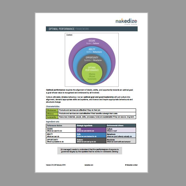 Nakedize Optimal Performance Framework PDF